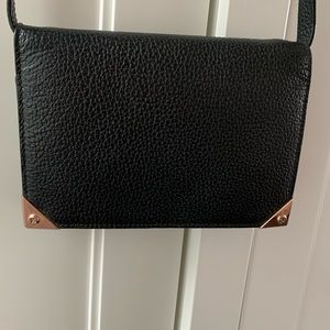 Alexander Wang prisma wallet bag